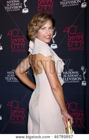 LOS ANGELES - JUN 14:  Arianne Zucker attends the 2013 Daytime Creative Emmys  at the Bonaventure Hotel on June 14, 2013 in Los Angeles, CA