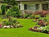 A beautifully arranged flower garden and residential yard on a bright day. poster