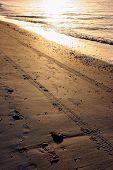 Tire Tracks in Sand on Sanibel Florida Beach Sunrise poster