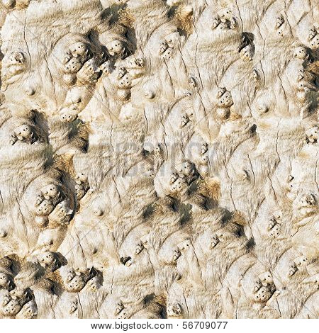 Seamless old wood background