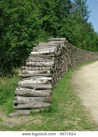 Deforestation - Stack of logs