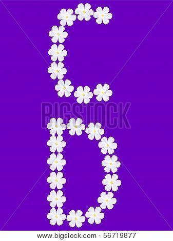flowers letter c,d