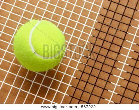 Tennis ball on racket strings