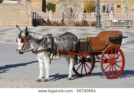 donkey and  tourist coach for children in Seville, Andalucia, Spain poster