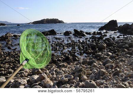 Nets And Pebble Beach