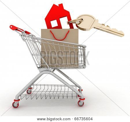 3d model house symbol with key in a paper shopping bag and shopping cart