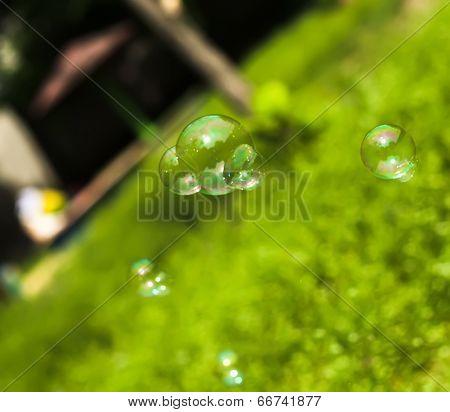Flying Soap Bubbles