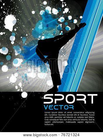 Sport, karate, vector