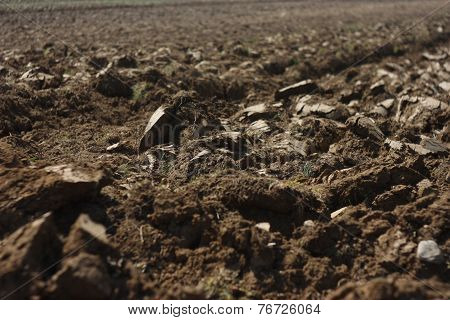 Plowing Field In Rural Countryside Romania