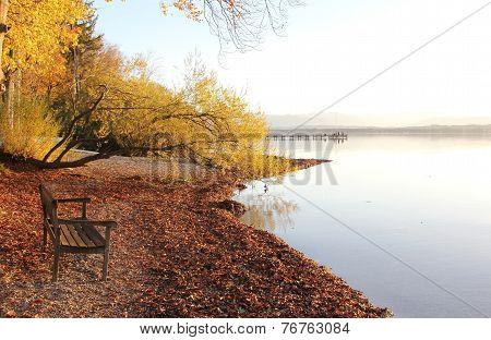Lake Shore Starnberg Lake With Bench
