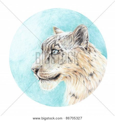 Handmade Painting Colored Pencils Snow Leopard Head