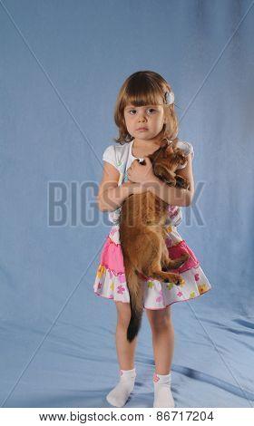 Lovely Girl With Kitten In Hands Portrait