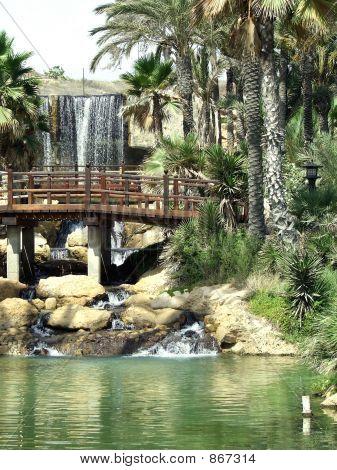 Waterfall Japanese Park Spain