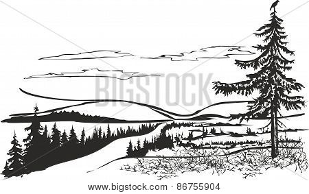Northern landscape with crow.