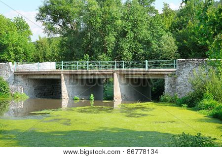 bridge over the river and aquatic plants poster