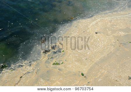 Polluted Water In The Port Of Ploumanac H