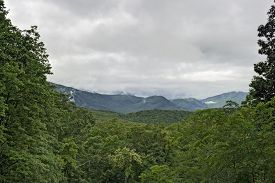 Roaring Fork Area, Great Smoky Mountains National Park, Tn