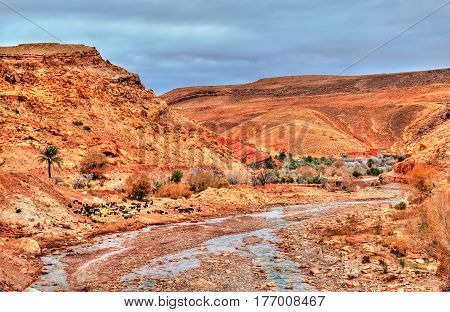 Landscape of the Asif Ounila valley, the Road of the Kasbahs in the High Atlas Mountains - Morocco.