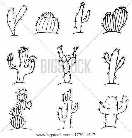 Sketch Doodle cactus black outline on a white background set of cacti in the desert.