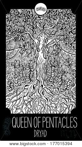 Queen of pentacles. Dryad. Minor Arcana Tarot card. Fantasy line art illustration. Engraved vector drawing. See all collection in my portfolio set