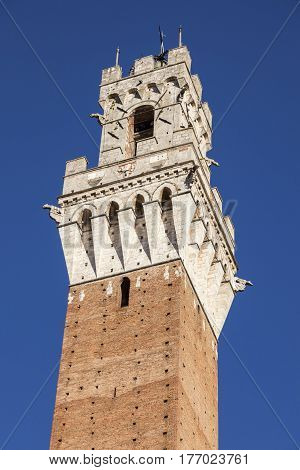 Siena town hall seen afternoon. Siena Tuscany Italy