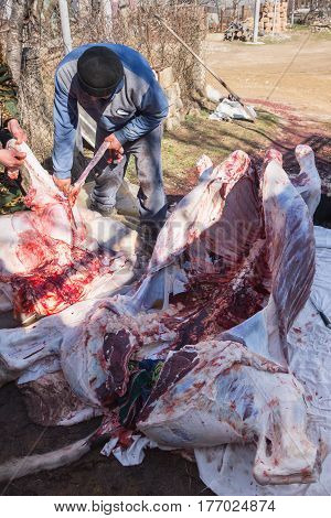 Butcher Cut The Carcass Of A Bull