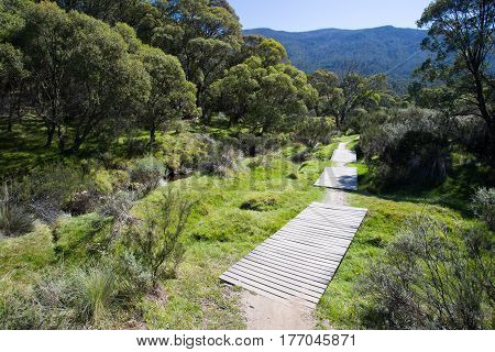 The walking trails along the Thredbo River at Lake Crackenback, New South Wales, Australia