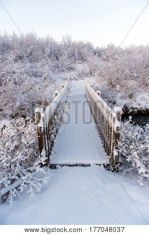 Snowy Bridge covers with fresh snow look mysterious