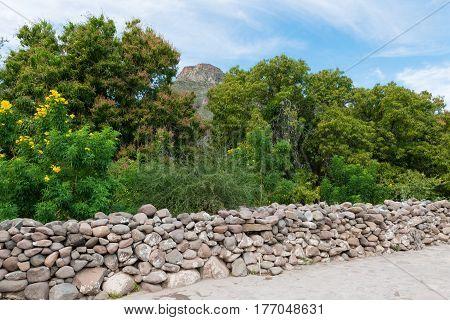Stone wall and trees San Javier near Loreto Baja California Mexico