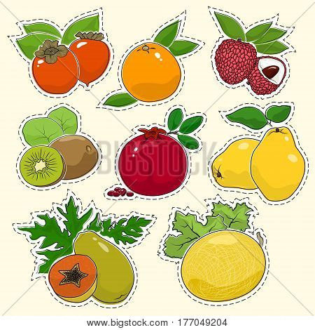 Set of Tropical Fruit Stickers, Pins or Patches, Persimmon with Grapefruit and Lichi, Kiwifruit with Pomegranate and Quince, Papaya and Melon, Vector Illustration
