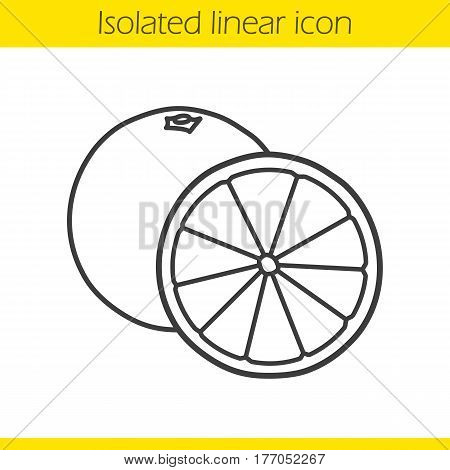 Orange fruit linear icon. Thin line illustration. Contour symbol. Vector isolated outline drawing