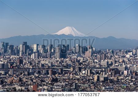Tokyo city view Tokyo downtown building and Tokyo tower landmark with Mountain Fuji on a clear day. Tokyo Metropolis is the capital of Japan and one of its 47 prefectures.