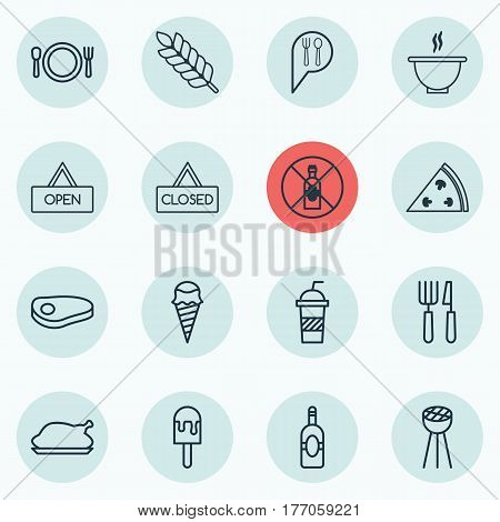 Set Of 16 Eating Icons. Includes Soda, Pepperoni, Grill And Other Symbols. Beautiful Design Elements.