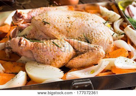 Whole chicken seasoned uncooked in baking tray with chopped vegetables carrots potatoes onions rosemary kitchen table preparation process closeup