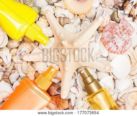 Cosmetic sunscreen products laid out around starfish on various shells. Must have summer beauty products