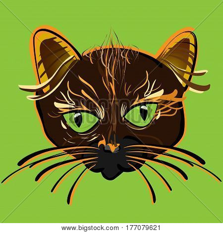 vector illustration of hand-drawn cat's face with big green eyes and whiskers