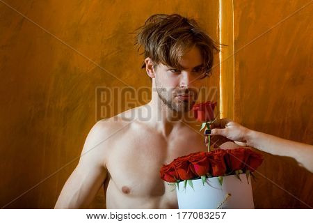 Bearded Muscular Man With Sexy Body Holds Red Rose Box