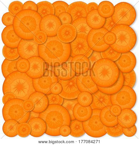 Background carrot. Vector illustration. Backdrop made of carrot slices. Round pieces of carrot.