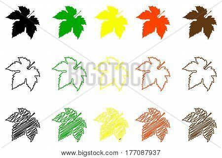 Fig leaf - color set , fig leaf