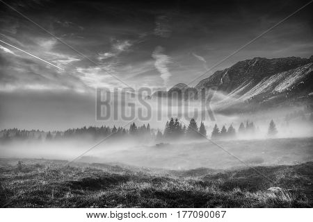 Alpine landscape with fog in black and white