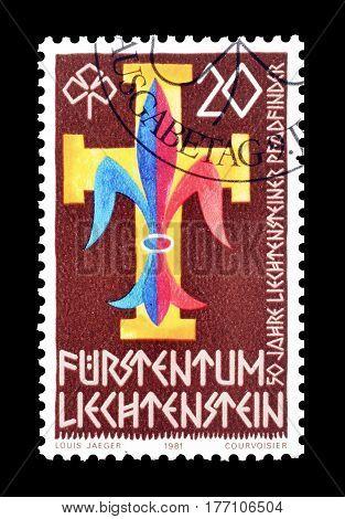 LIECHTENSTEIN - CIRCA 1981 : Cancelled postage stamp printed by Liechtenstein, that shows Coat of arms.