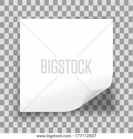 Blank sheet of paper on transparent background. Empty white paper sheet with curled corner. Vector illustration.