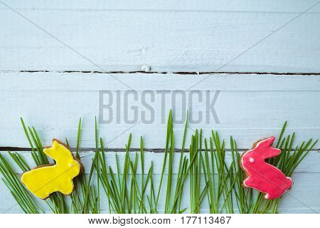 Happy easter. Easter background. Easter cookies. Gingerbread in the form of colored Easter rabbits on green grass on a background of white wooden desk. Free space