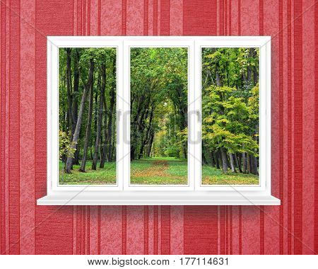 window in the cozy room with view to the forest