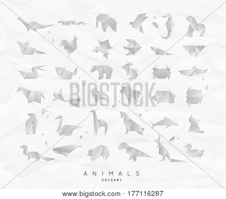 Set of animals white origami snake elephant bird seahorse frog fox mouse butterfly pelican wolf bear rabbit crab shark horse fish parrot monkey pig turtle penguin giraffe cat panda kangaroo on crumpled paper background