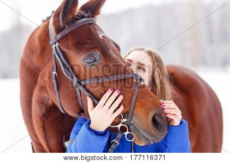 Young teenage girl spending time with her friend bay horse in winter park. Friendship concept image