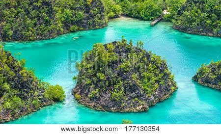 Close up of some Rock Island in Painemo, Raja Ampat, West Papua, Indonesia.