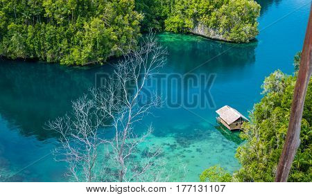 Bamboo Hut in Mangrove near Warikaf Homestay, Kabui Bay and Passage. Gam Island, West Papuan, Raja Ampat, Indonesia.