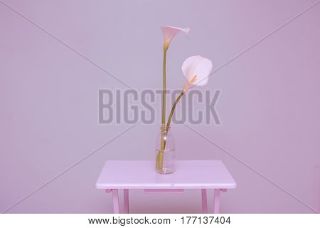 Elegant Full Blooming Calla Lily In Transparent Glass Bottle
