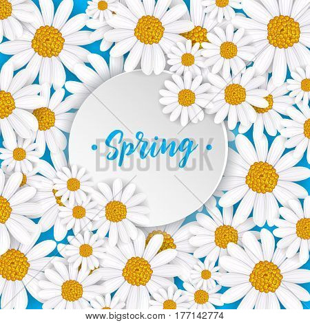 Spring greeting card with blooming chamomile flower vector illustration. Floral decorated spring design, romantic celebration template, feast congratulation, nature seasonal flowering background